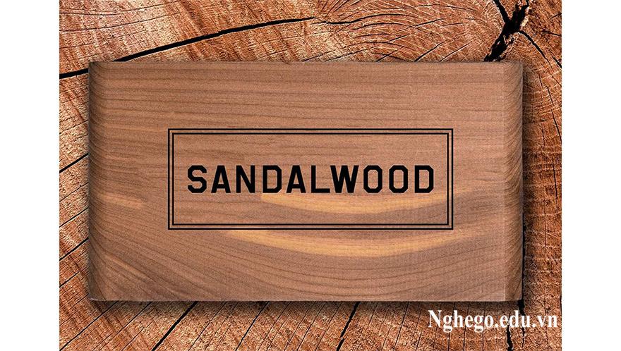 Đàn hương là gỗ đắt thứ hai sau Bocote