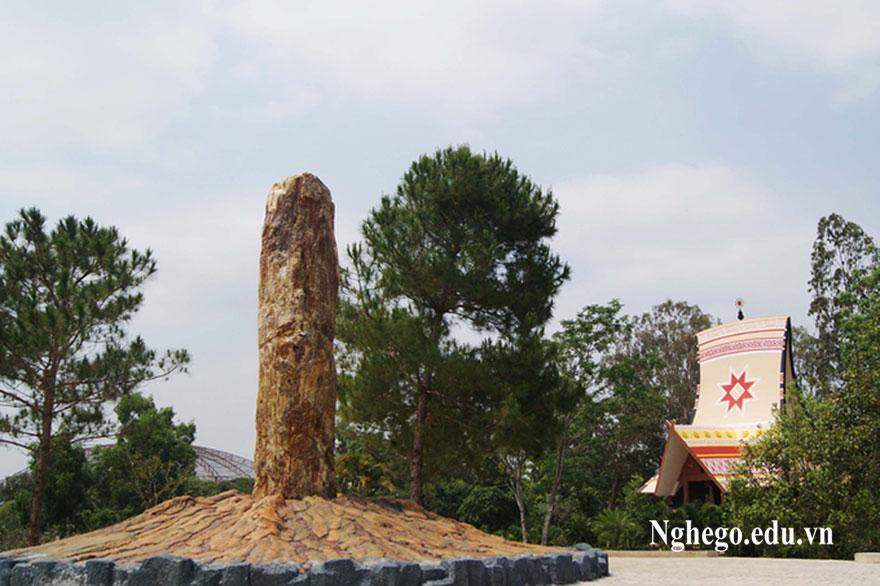 gỗ hoá thạch là gì