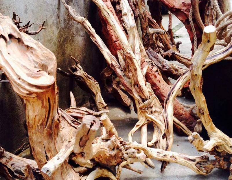 Hình dạng các gỗ lũa trước khi được điêu khắc