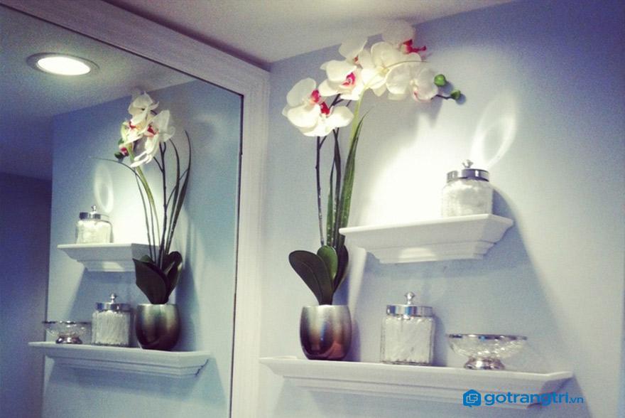 Lưu ý khi chọn kệ trang trí cho nhà tắm