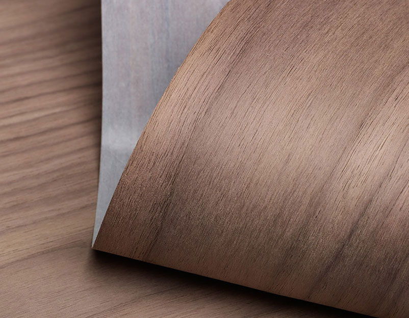 Một lát veneer làm từ gỗ sồi